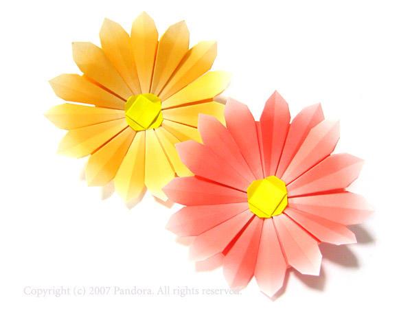 花の縁がぼやけているのは ... : 折り紙 バラ 簡単 折り方 : すべての折り紙